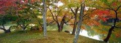 2-OK-Japan-03.jpg